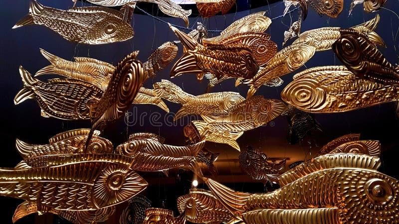 peixe dourado fotografia de stock royalty free