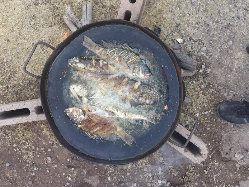 Peixe frito foto de stock