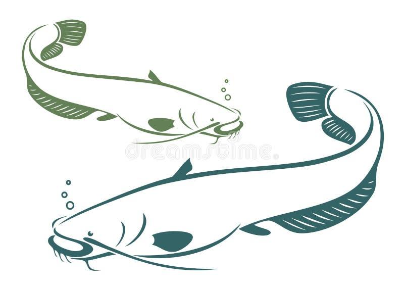 Peixe-gato