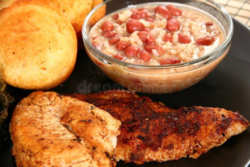 Peixe-gato e galinha de Cajun imagens de stock