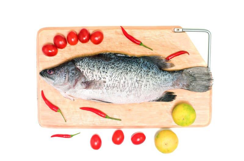 Peixes asiáticos crus frescos do badejo na placa de corte de madeira com limão, tomate e pimentões no fundo branco, vista superio imagem de stock