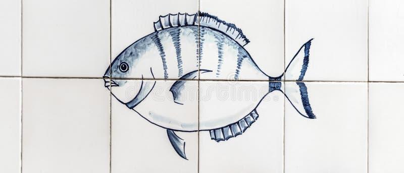 Peixes, atum, azul e gordura imagens de stock royalty free