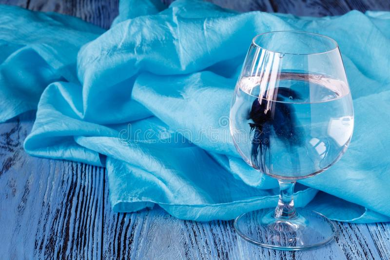Peixes azuis no vidro de vinho foto de stock