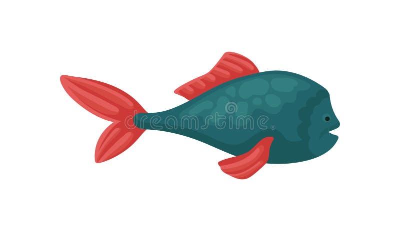 Peixes azuis pequenos com as aletas vermelhas brilhantes Vida de mar tropical Animal marinho Vida do mar e do oceano Projeto liso ilustração stock
