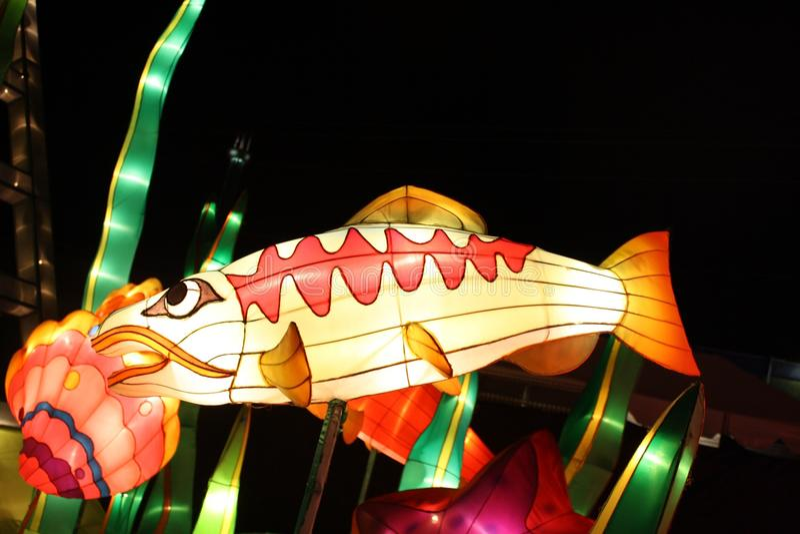Peixes chineses de incandescência da lanterna fotografia de stock