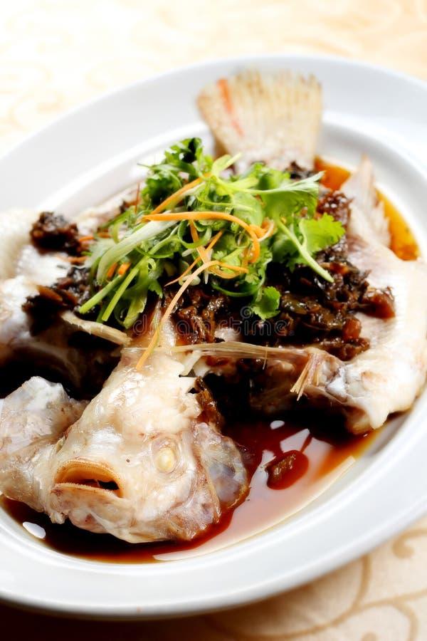 Peixes chineses do córrego foto de stock royalty free