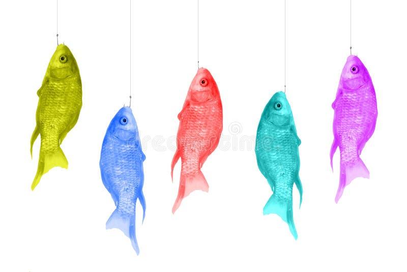 Peixes coloridos que penduram nos ganchos Camisas de cores brilhantes em um fundo branco Projeto do pop art, conceito criativo Ar ilustração do vetor