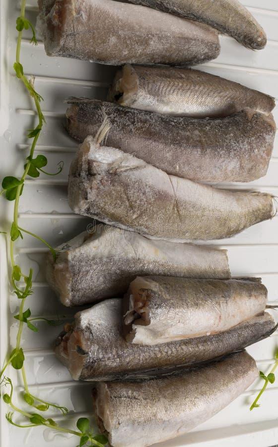 Peixes congelados das pescadas imagem de stock