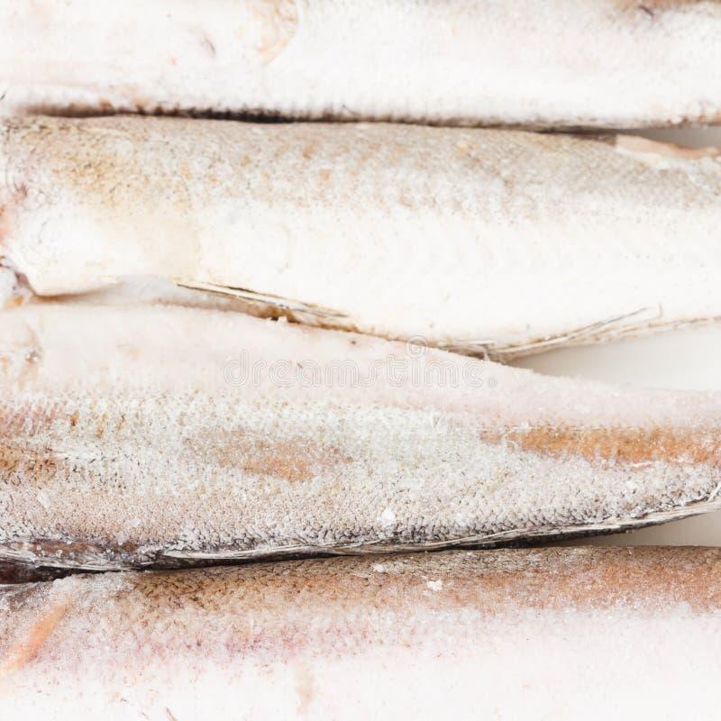 Peixes congelados das pescadas em um fundo branco fotografia de stock