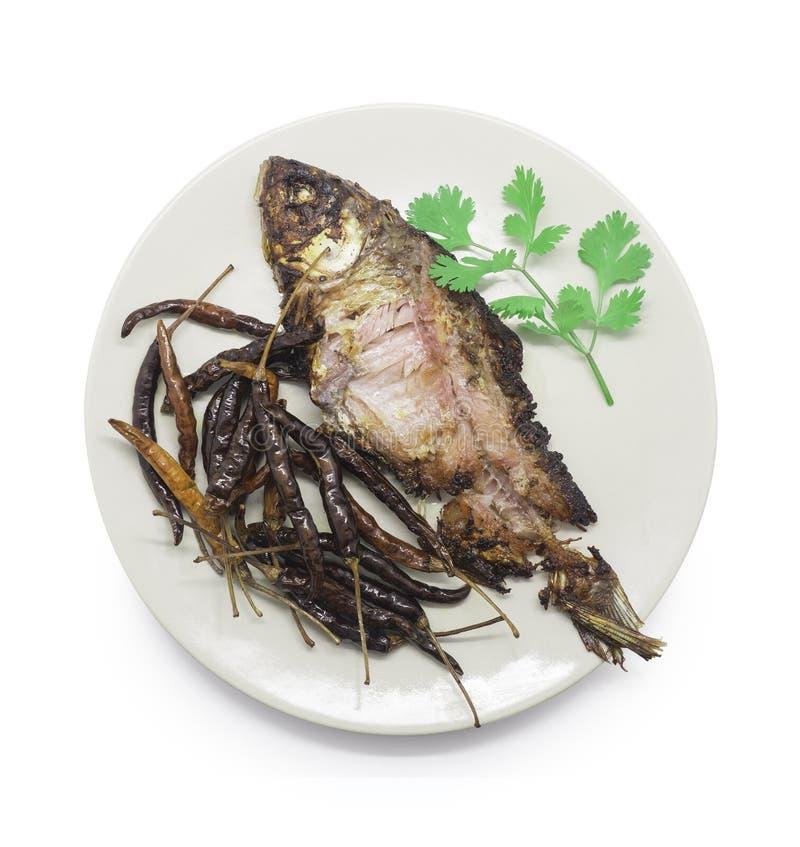 Peixes conservados fritados, peixes da carpa e pimentões secados com coentro sobre fotografia de stock royalty free