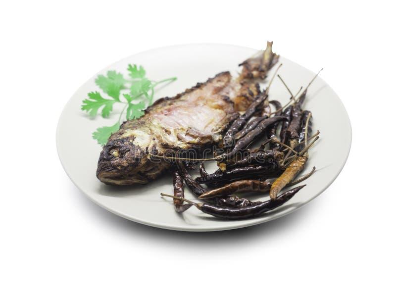 Peixes conservados fritados, peixes da carpa e pimentões secados com coentro sobre imagens de stock royalty free