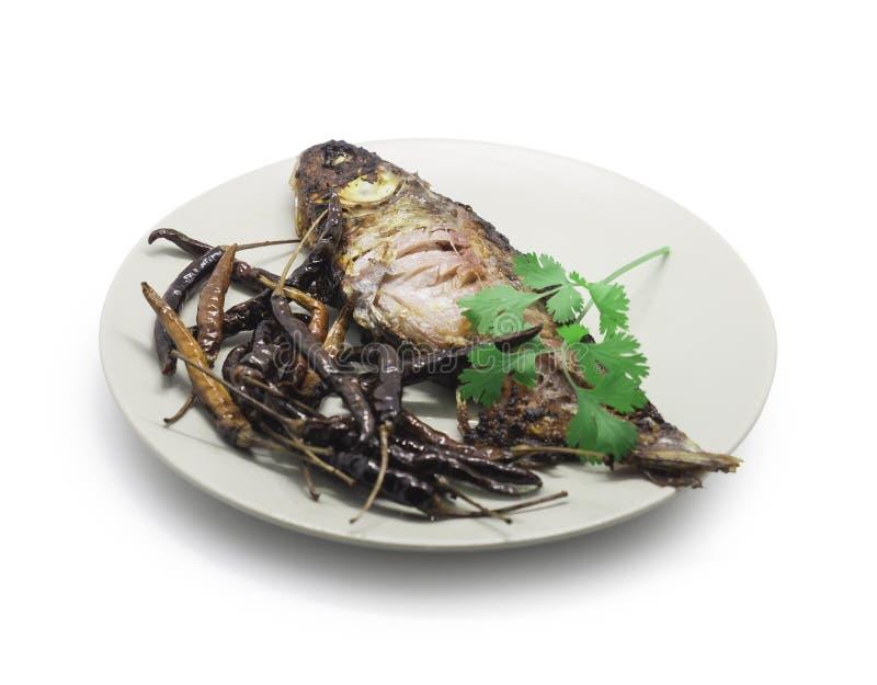 Peixes conservados fritados, peixes da carpa e pimentões secados com coentro sobre imagem de stock royalty free