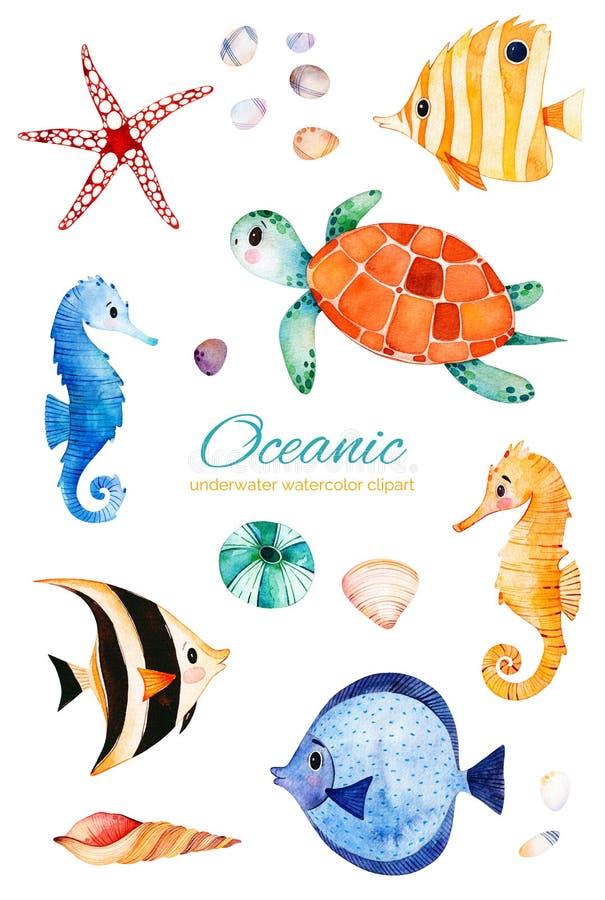 Peixes corais coloridos pintados à mão subaquáticos cavalo marinho, tartaruga ilustração do vetor