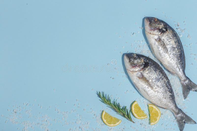 Peixes crus do dorada com especiarias, sal, limão e ervas, alecrins em um fundo ligth-azul Vista superior fotografia de stock