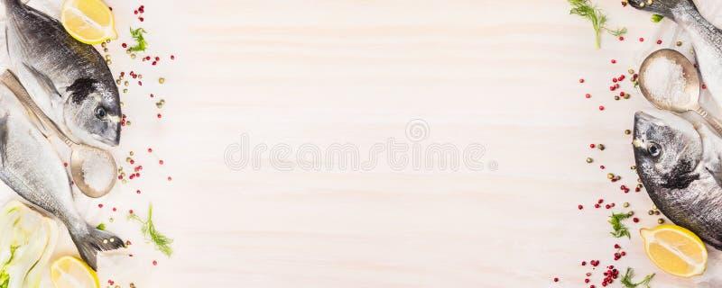 Peixes crus do dorado com limão, erva e especiarias no fundo de madeira branco, vista superior, bandeira para o Web site com cozi fotos de stock royalty free