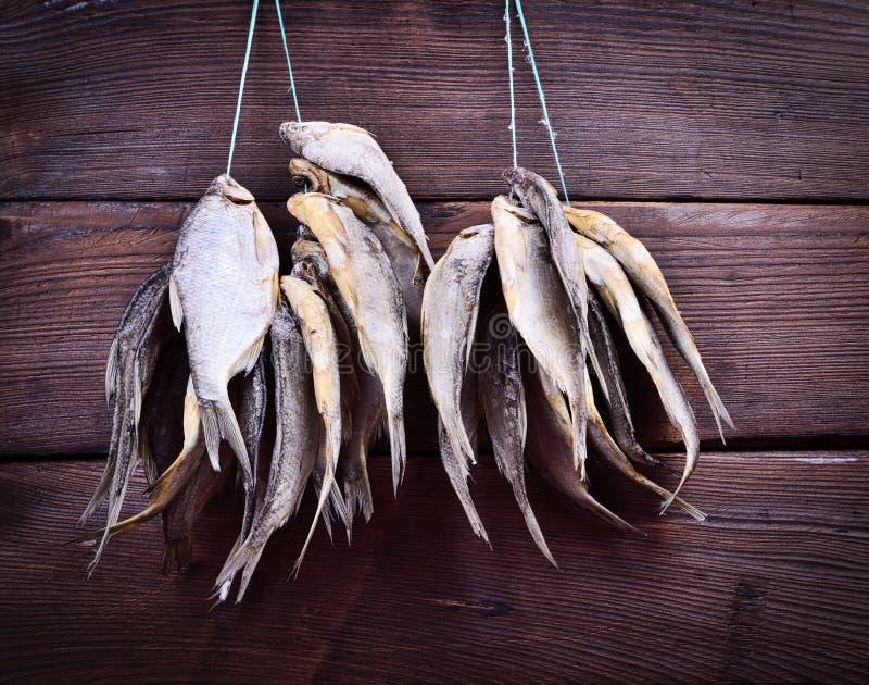 Peixes curados que penduram em uma corda imagem de stock