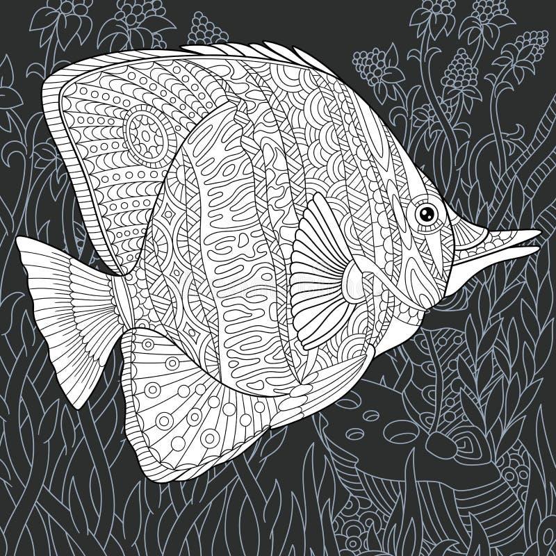 Peixes da borboleta no estilo preto e branco ilustração stock