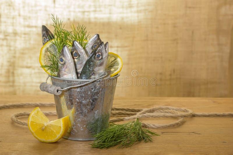 Peixes da cavala em uma cubeta do metal foto de stock