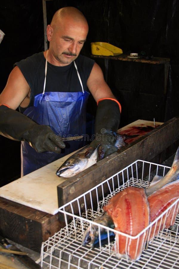 Peixes da limpeza do homem - salmões de Ontário de lago fotografia de stock royalty free
