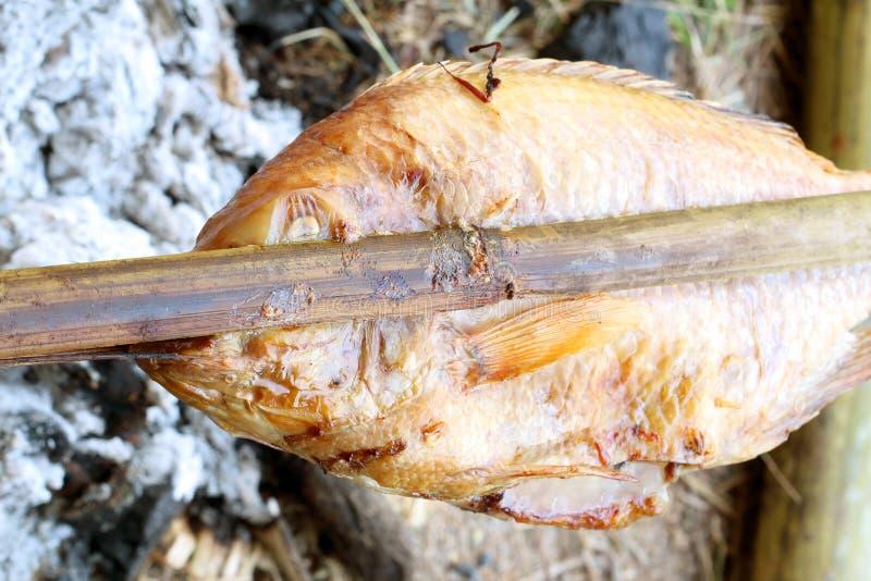 Peixes da queimadura em uma grade do carvão vegetal foto de stock