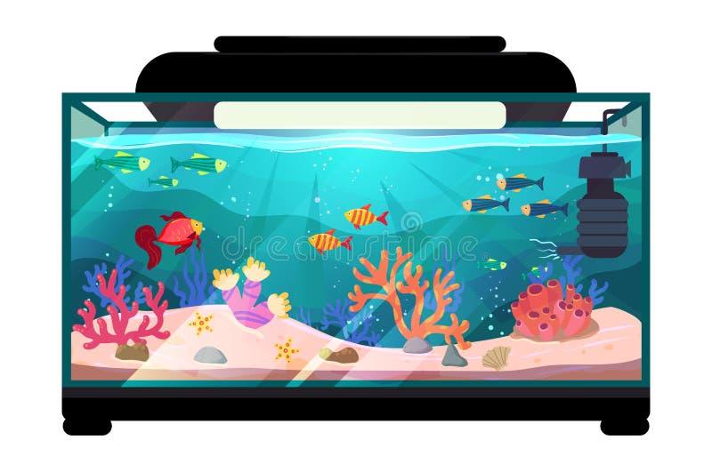 Peixes de água doce dos desenhos animados na ilustração do vetor do aquário do tanque, peixe exótico dos desenhos animados na ilu foto de stock royalty free