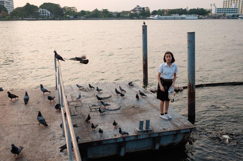 Peixes de alimentação do estudante de mulher no porto fotografia de stock royalty free
