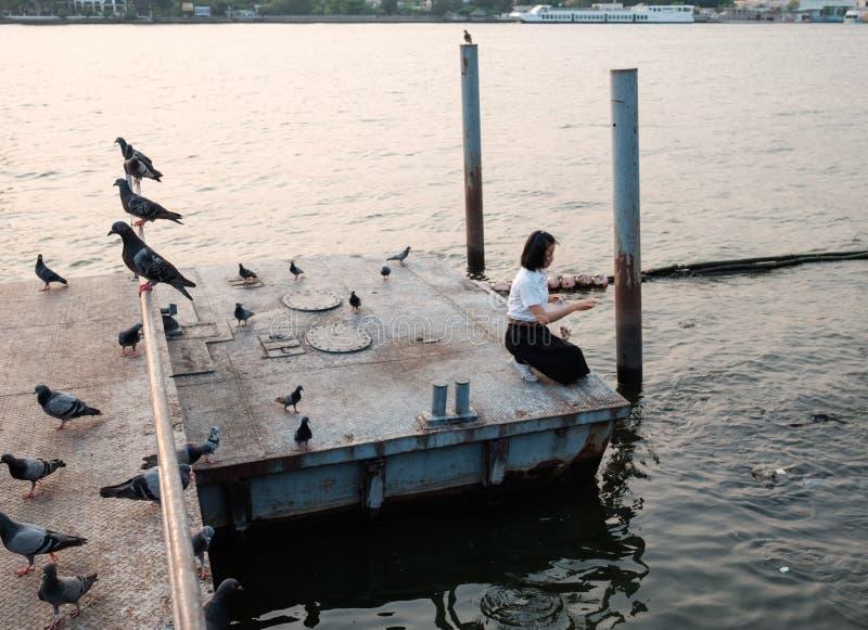Peixes de alimentação do estudante de mulher no porto foto de stock royalty free