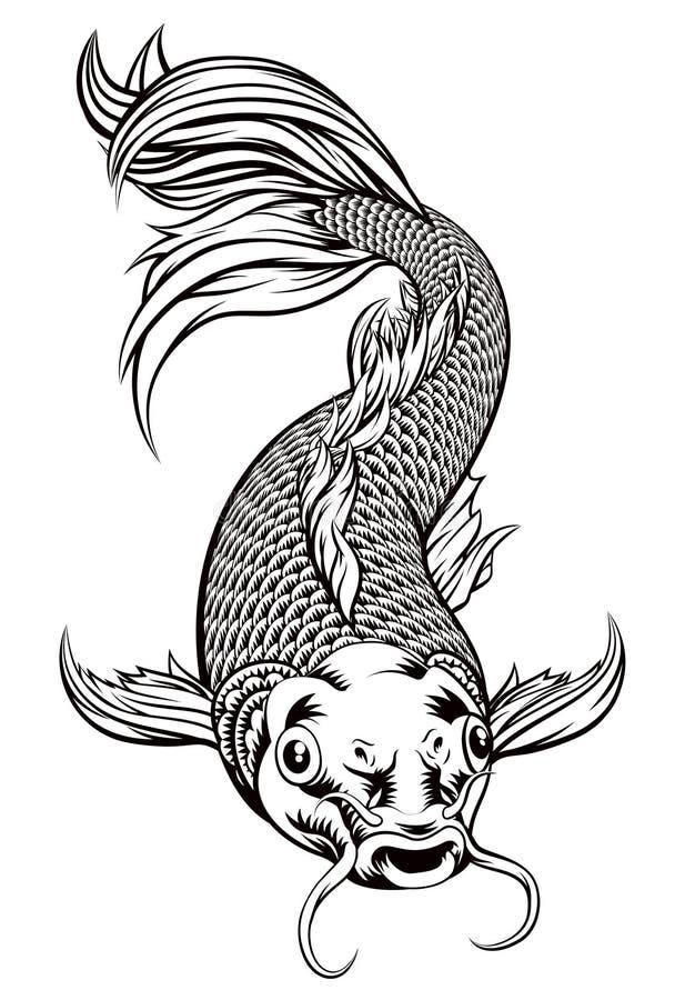Peixes de Koi Carp ilustração do vetor