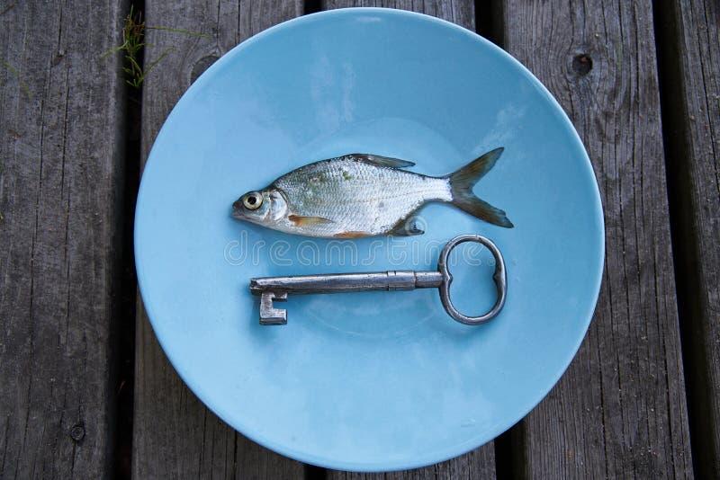 Peixes de prata pequenos em uma placa com chave antiga fotografia de stock
