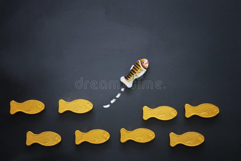 peixes diferentes que nadam oposto à maneira das idênticas Conceito da coragem e do sucesso Fundo do quadro-negro fotos de stock royalty free