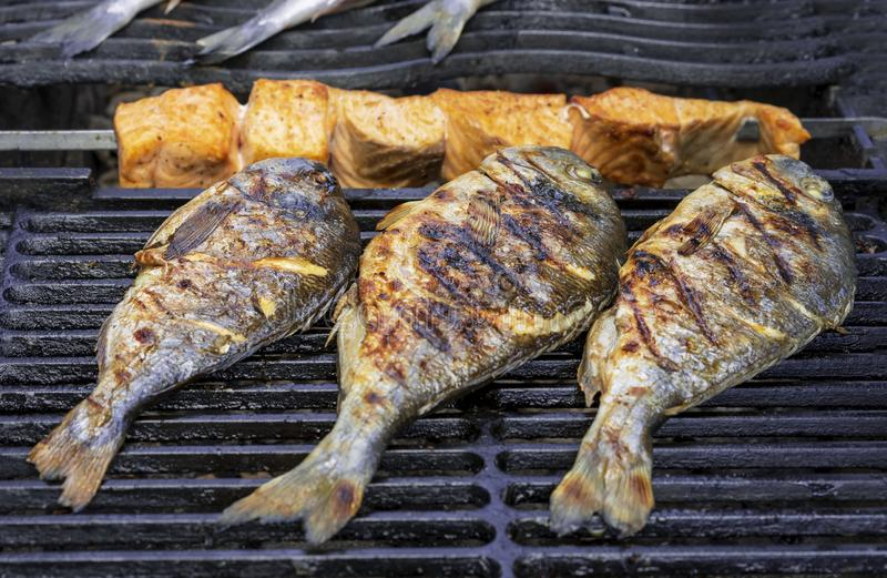 Peixes do dorada e fatias grelhados de salmões na grelha da grade imagens de stock