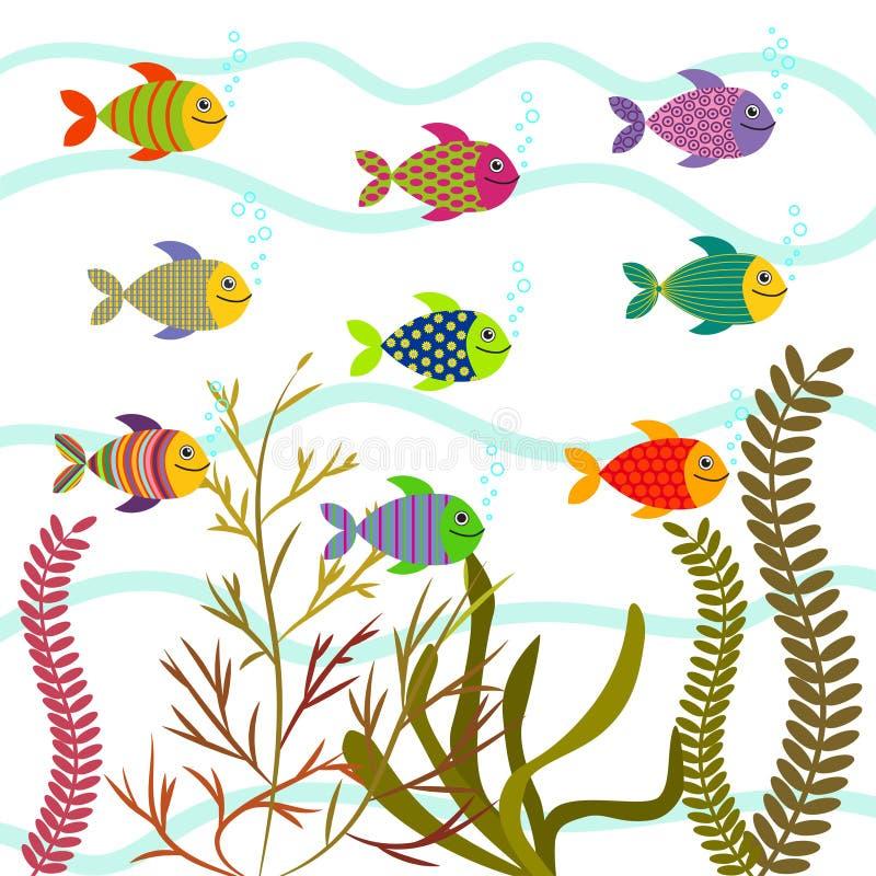 Peixes do mar coloridos Vetor subaquático da natureza ilustração royalty free
