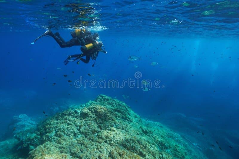 Peixes do olhar do homem e da criança do mergulho autônomo debaixo d'água fotografia de stock royalty free