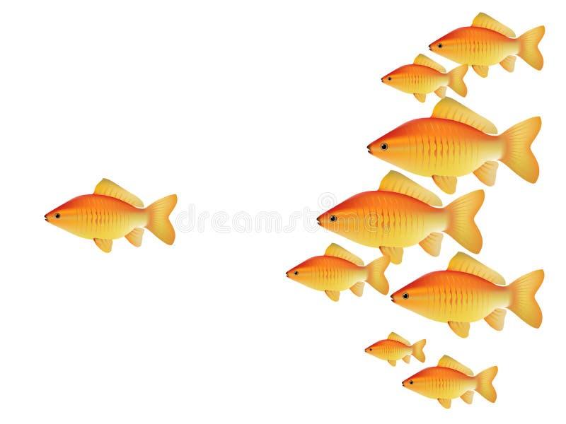 Peixes do ouro do vetor ilustração royalty free