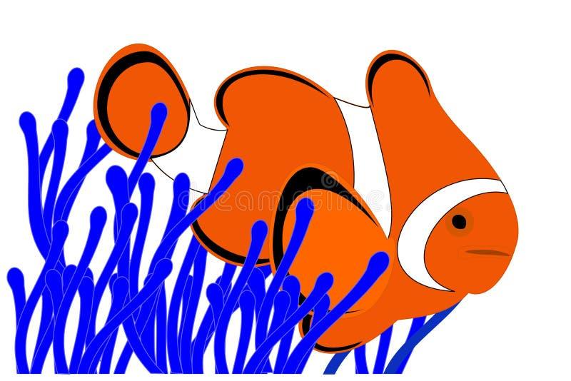 Peixes do palhaço ilustração do vetor