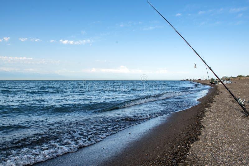 Peixes do pescador cedo na manhã na costa Vara de pesca e gerencio acampar imagem de stock