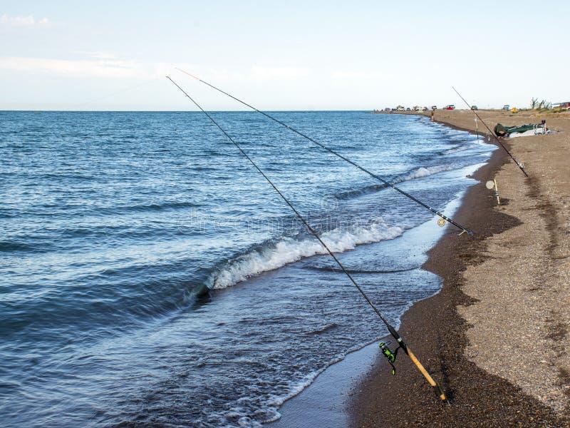 Peixes do pescador cedo na manhã na costa Vara de pesca e gerencio acampar fotografia de stock
