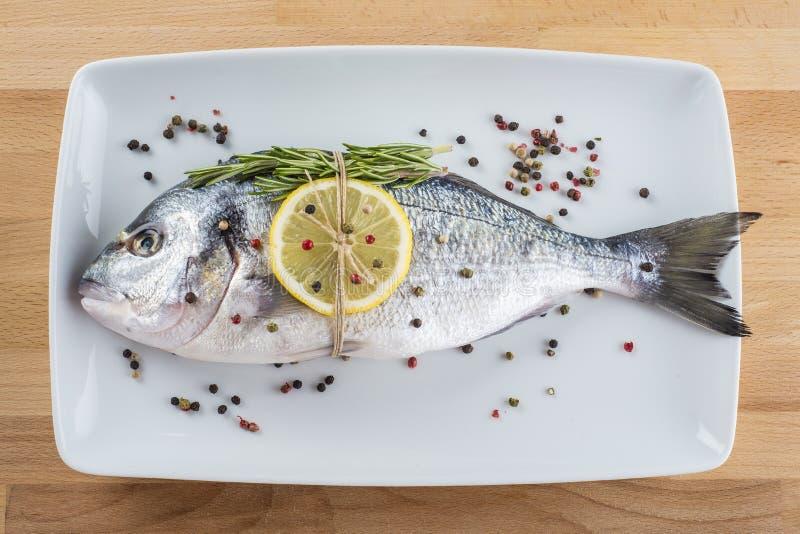 peixes do sargo da Porca-cabeça com especiarias em uma bandeja foto de stock royalty free