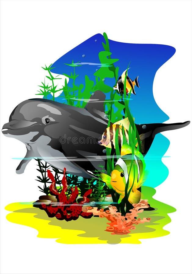 Peixes e golfinho tropicais (Vetor) ilustração stock