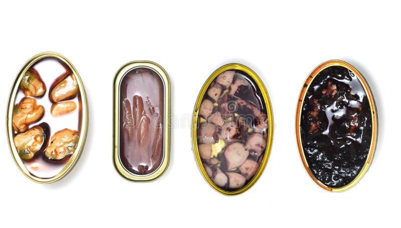 Peixes e marisco do grupo no branco imagens de stock royalty free