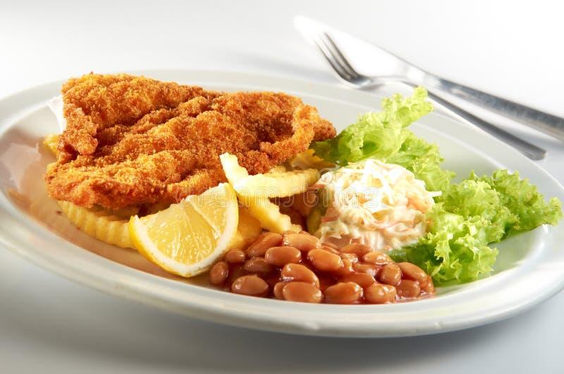 Peixes e microplaqueta imagem de stock