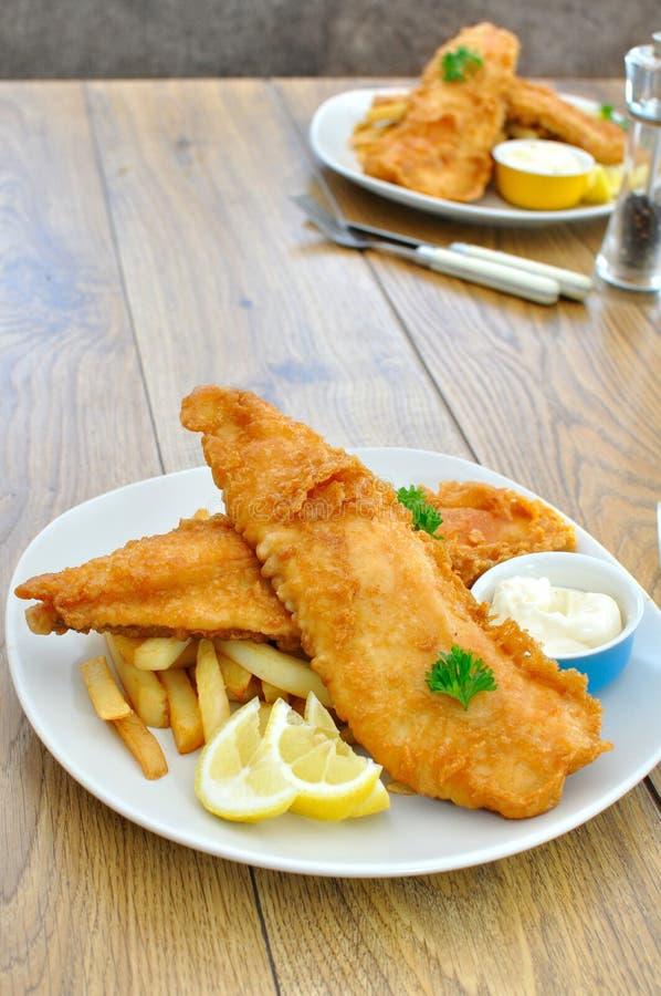 Peixes e microplaquetas imagem de stock