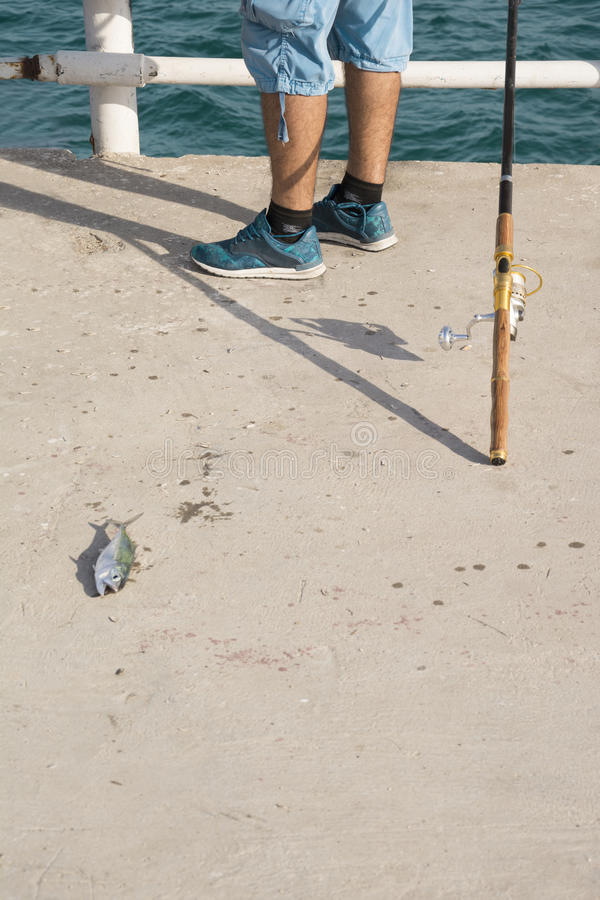 Peixes e pescador inoperantes imagem de stock royalty free