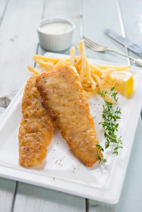 Peixes e refeição da microplaqueta foto de stock