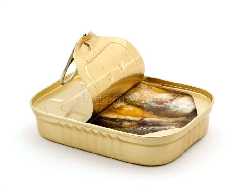 Peixes enlatados imagem de stock royalty free