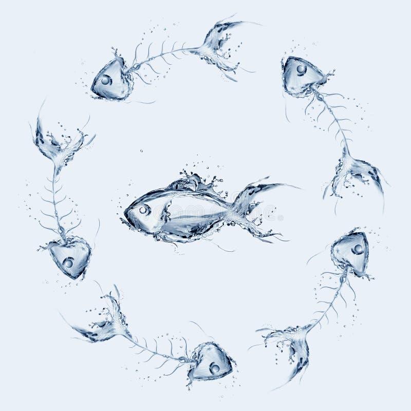 Peixes entre os Fishbones fotografia de stock