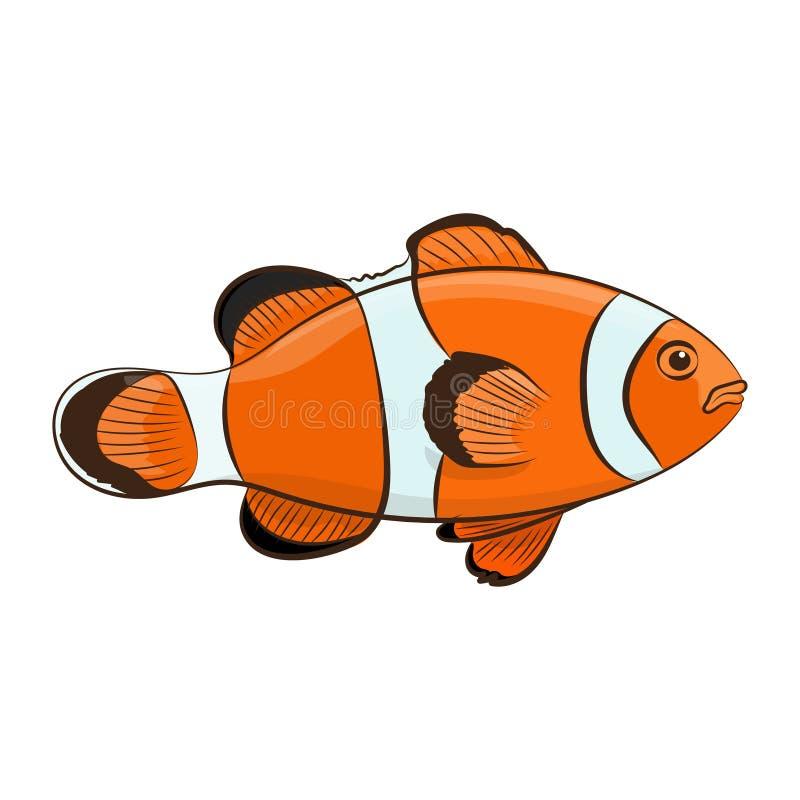 Peixes felizes do palhaço dos desenhos animados sobre o fundo branco Ilustração do vetor ilustração royalty free