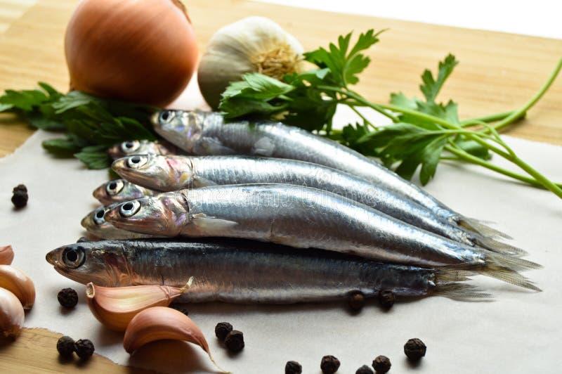Peixes frescos do hamsi fotografia de stock