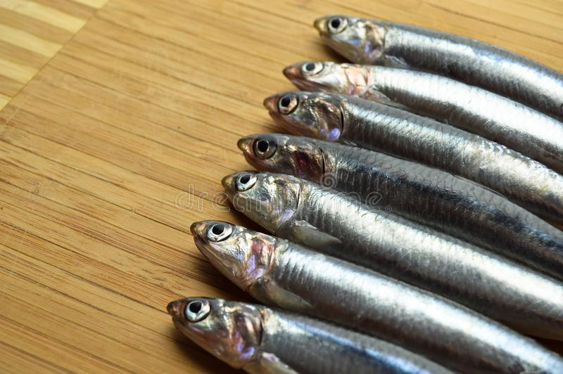 Peixes frescos do hamsi foto de stock