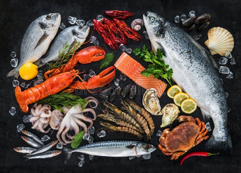 Peixes frescos e marisco fotografia de stock royalty free